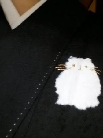 新しい単衣の着物!デブ猫柄!!
