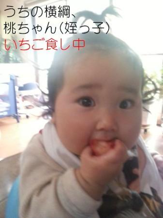 姪っ子の桃ちゃんいちご食し中。お相撲さんみたいにムチムチ