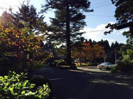 今日の爽やかな秋晴れ