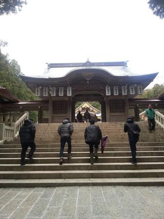 弥彦神社に初詣