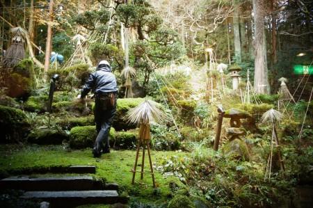 阿賀野市小林造園さんの見事な雪囲い、庭師さんの芸術
