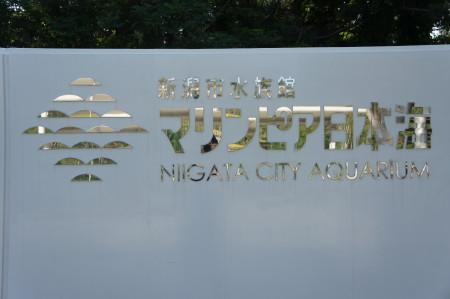新潟のj観光水族館といったらマリンピア日本海