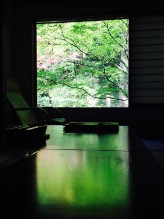 緑あふれる客室
